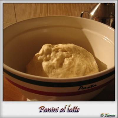 panini_2