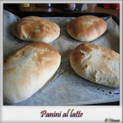panini_4