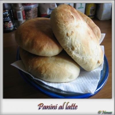 panini_5