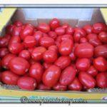 Polpa di pomodoro – La salsa di pomodoro fatta in casa